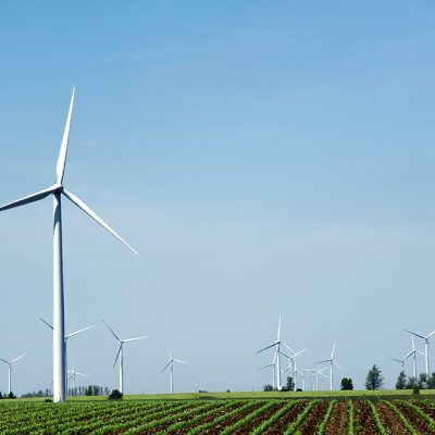 One Year Later: Wind Project Updates